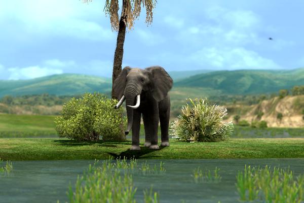 두목코끼리!