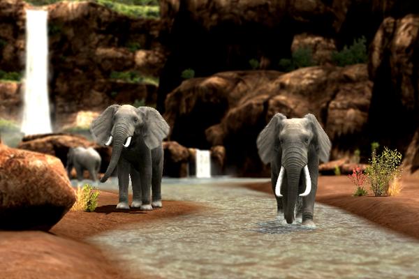 폭포의코끼리